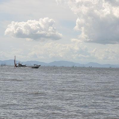 有明海の幸
