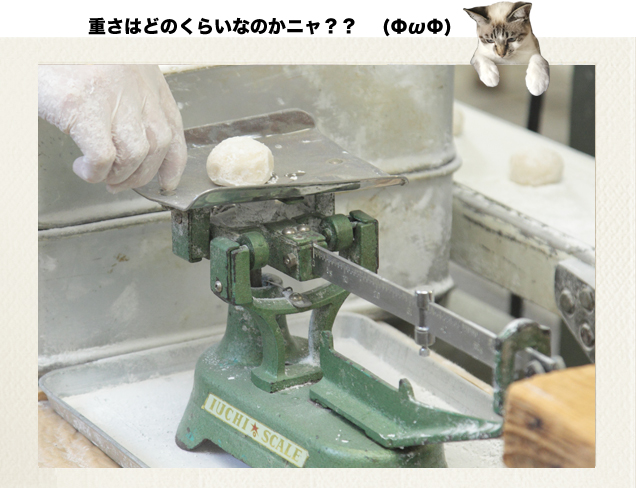 梅花堂 越山もち 2015_18