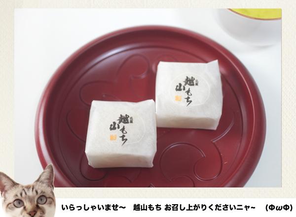 梅花堂 越山もち 2015_21
