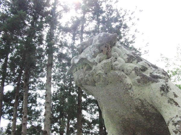 中山大藤まつり2016_5