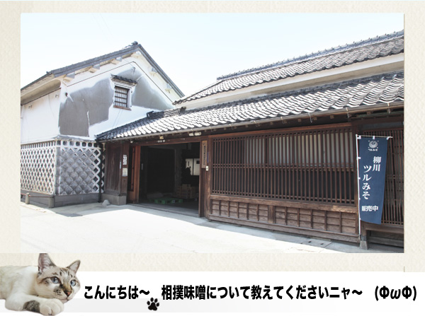 相撲味噌1