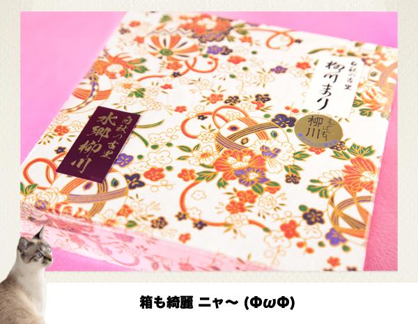 柳川まり_2017_7